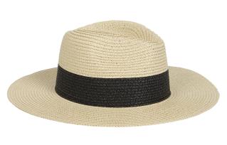 Aldo Etoella Straw Hat in Natural ($22.00)