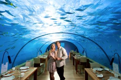 Ithaa Undersea Restaurant at Conrad Maldives Rangali Island Resort by Hilton Luxury Hotels
