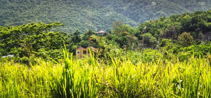 Jamaican countryside / photo credit @travelinglamas