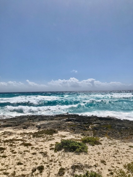 The wild east coast of Cozumel Island, Mexico