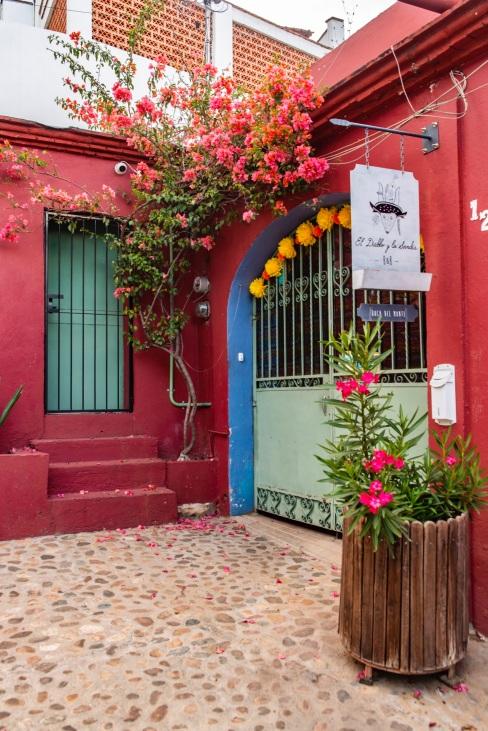 Where to Stay in Oaxaca City: The Best Boutique Hotels in Oaxaca City to Check Into Now (December 2020)/El Diablo y La Sandía Boca Del Monte/ TravelingLamas.com / Photo by @travelinglamas