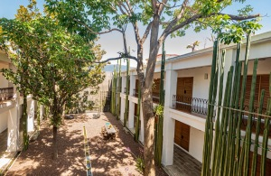 Where to Stay in Oaxaca City: The Best Boutique Hotels in Oaxaca City to Check Into Now (December 2020)/Hotel Azul/ TravelingLamas.com / Photo by@travelinglamas