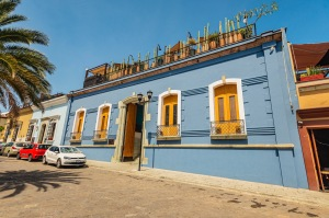 Where to Stay in Oaxaca City: The Best Boutique Hotels in Oaxaca City to Check Into Now (December 2020)/Hotel Los Amantes/ TravelingLamas.com / Photo by@travelinglamas