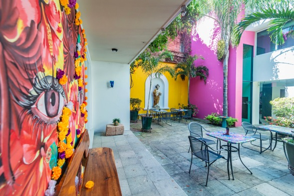 Where to Stay in Oaxaca City: The Best Boutique Hotels in Oaxaca City to Check Into Now (December 2020) / Casa de las Bugambilias / TravelingLamas.com / Photo by @travelinglamas