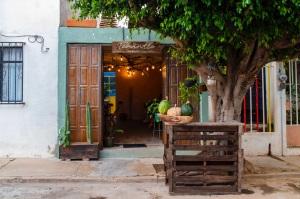 Best Restaurants in Oaxaca: Interview with Chef Toño Garcia of Oaxaca's Teocintle / TravelingLamas.com / Photo by Alberto Lama@travelinglamas