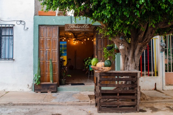 Best Restaurants in Oaxaca: Interview with Chef Toño Garcia of Oaxaca's Teocintle / TravelingLamas.com / Photo by Alberto Lama @travelinglamas