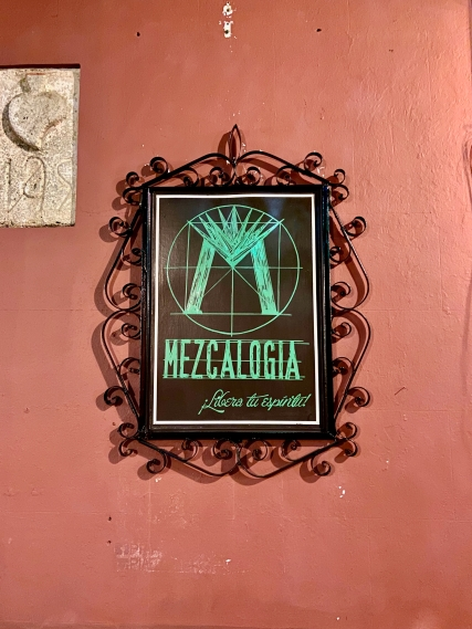 Best Things to Do, Eat & See NOW in Magical Oaxaca City, Mexico (January 2021 / Mezcalogía Mezcal Bar / TravelingLamas.com / Photo by @travelinglamas